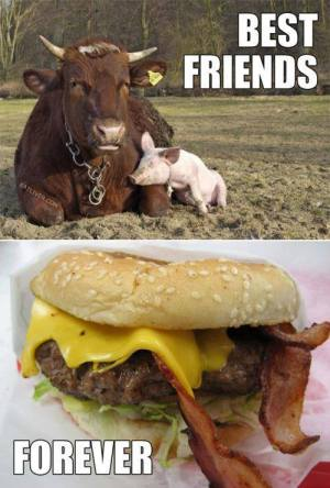 best friends forever bacon